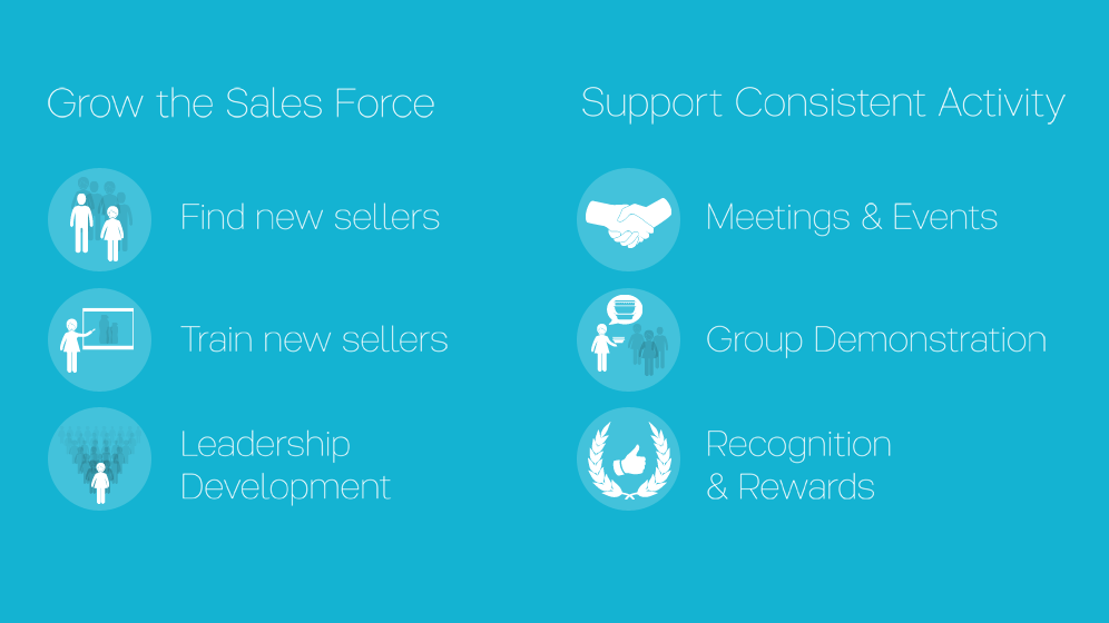 Grow the sales force, find new sellers, train new sellers, leadership development; support consistent activity, meetings and events, group demonstration, recognition and rewards
